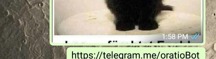 WhatsApp 過濾關於出現「Telegram」的連結