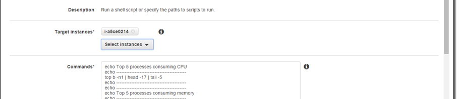 AWS 的 EC2 Run Command 功能支援 Linux Instance